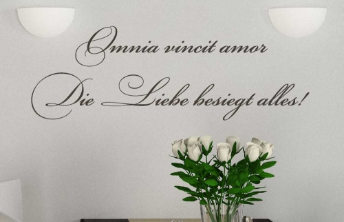 wandtattoo omnia vincit amor reuniecollegenoetsele. Black Bedroom Furniture Sets. Home Design Ideas